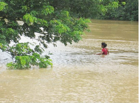 flood-panic
