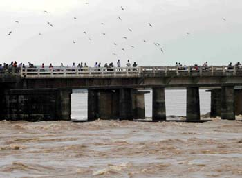 mahanadi-flood