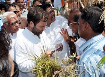 rahul-farmers