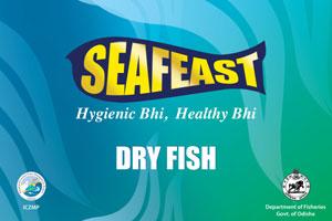 Dryfish-branding