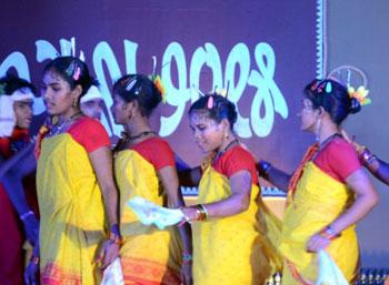 adivasi-mela