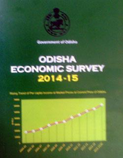 odisha-eco-survey