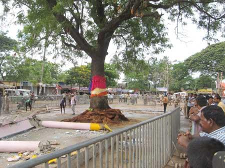 Balabhadra-Daru