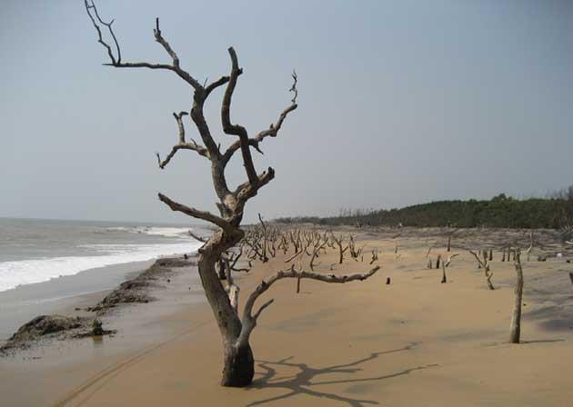 erosion-hit-coast