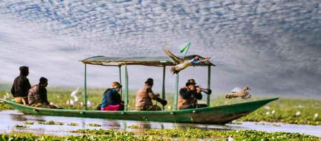 bird-festival-chilika